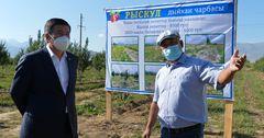 Фермерское хозяйство в Таласской области заработало 4 млн сомов