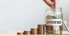 «Бай-Тушум» не будет выплачивать дивиденды по итогам 2019 года