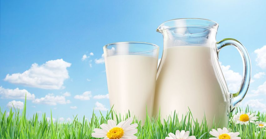 В Кыргызстане предлагают поднять закупочную цену на молоко в два раза