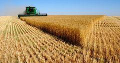 ЖК рассмотрит запрет на кредиты для фермеров дороже 7%
