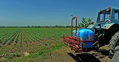 Продукцию растениеводства произвели на сумму 110 млрд сомов