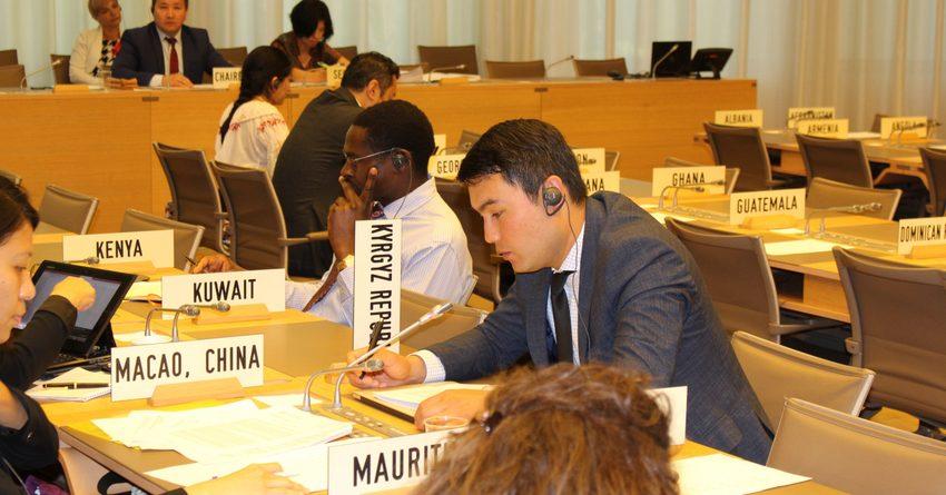 Кыргызстан в Женеве обсудил интересы трудовых мигрантов