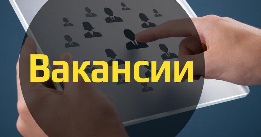 Страны ЕАЭС запустят 1 июля совместный проект по поиску работы