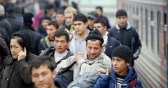 Количество трудовых мигрантов из Кыргызстана превышает 735 тысяч человек