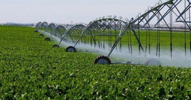 Через РКФР фермерам раздадут $55 млн