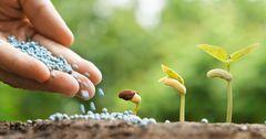 В КР нехватка минеральных удобрений – запасы покрывают всего 6.7%