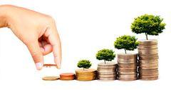 В КР могут создать кыргызско-венгерский фонд прямых инвестиций