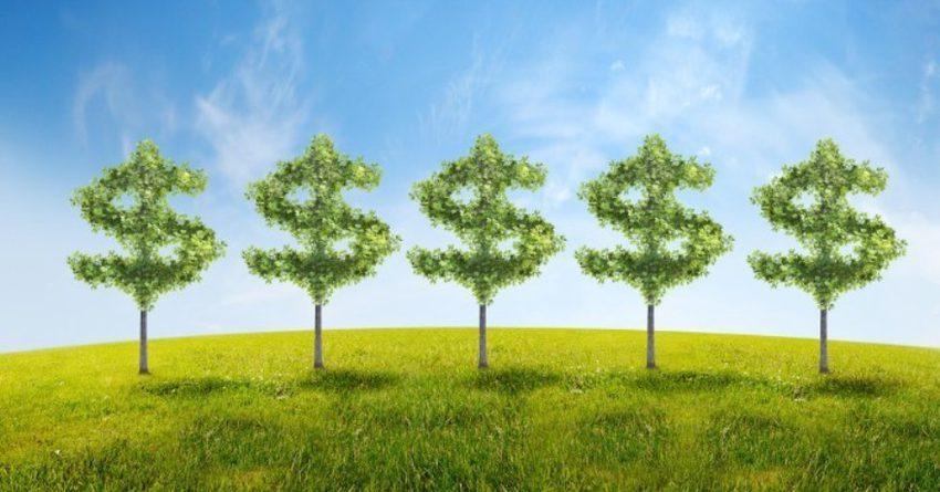 Германия поддержит внедрение зеленой экономики в Кыргызстане
