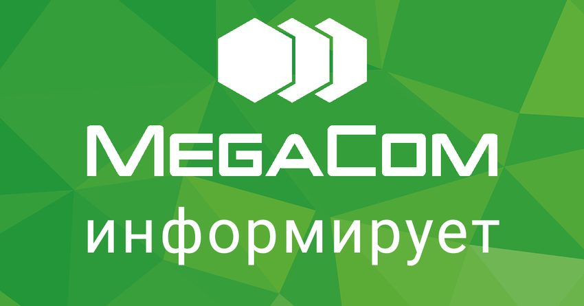 MegaCom работает в штатном режиме. Безопасность обеспечивают народные дружины