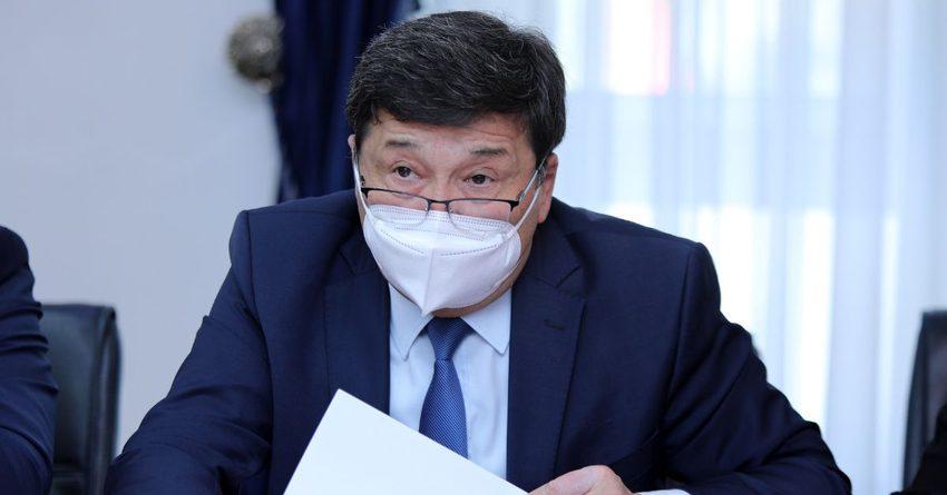 РК может разрешить въезд кыргызстанцам для получения виз